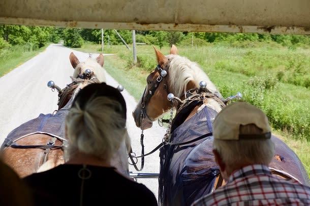 horse drawn tour