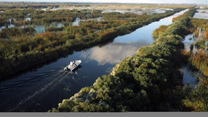 Boat navigates the marshes of Southwest Louisiana.