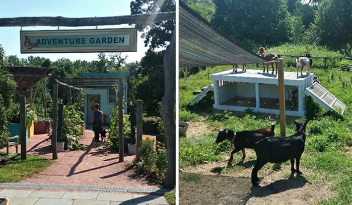 Gabis Arboretum Adventure Garden by Katharine Stob