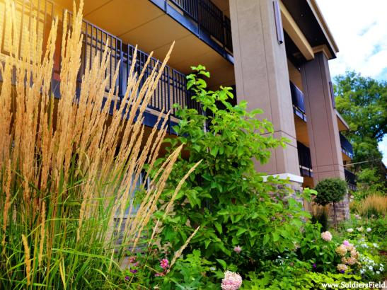 Extended Stay Suite - Exterior