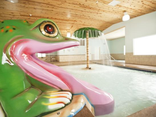 Frog Slide - Kiddie Pool