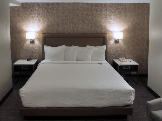 Standard King Guest Room