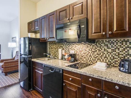 Kitchenette, Efficiency, King Suite