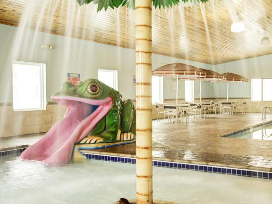 Raining Palm Tree - Kiddie Pool