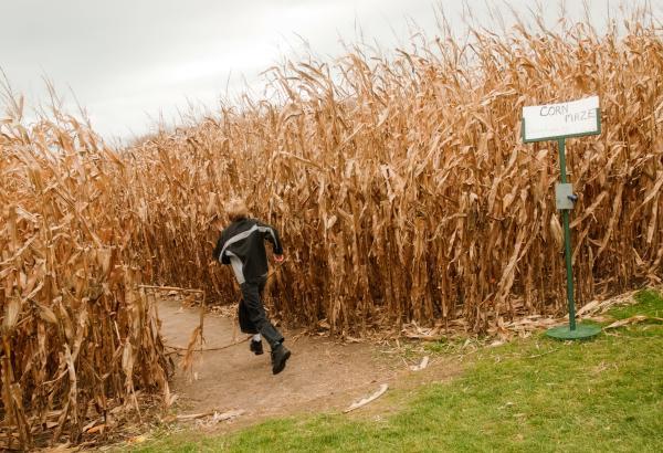 Elgin Corn Maze