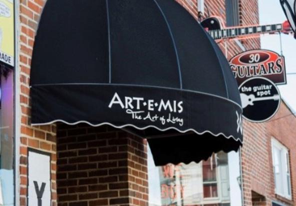 Artemis-The Art of Living