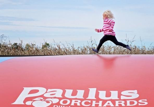 Paulus pillow jump