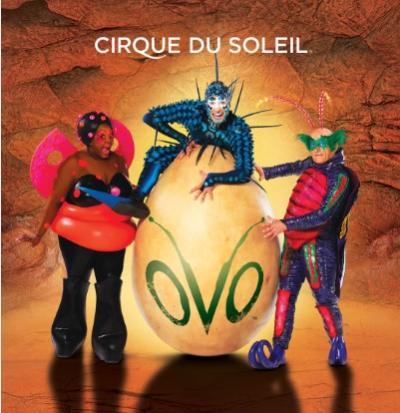 Cirque du Soleil OVO 2017