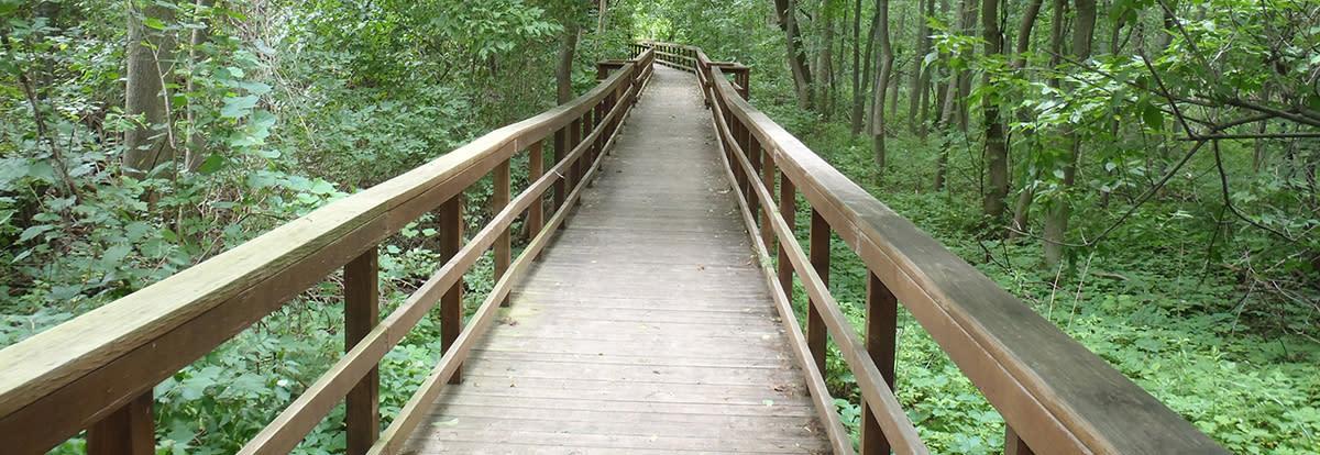 Burchfield Park Path
