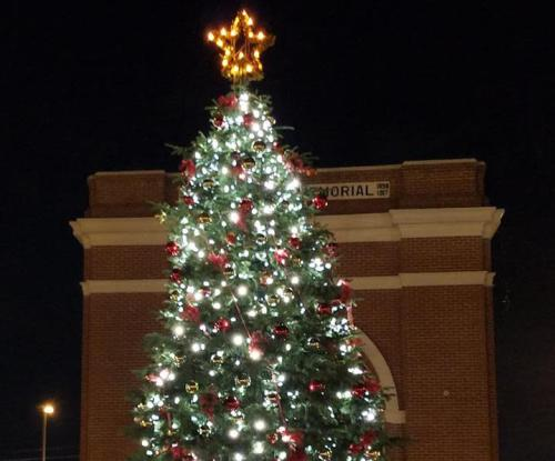 Gretna Christmas Tree