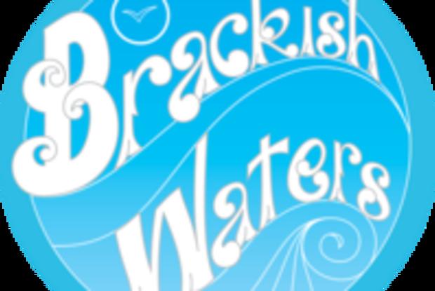 Brackish Waters