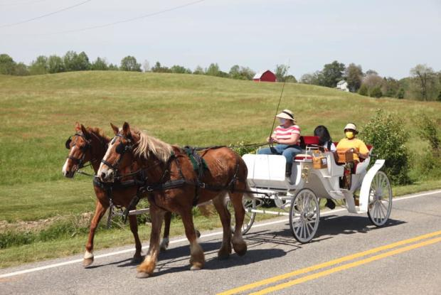 BRANDYWINE CARRIAGE TOURS