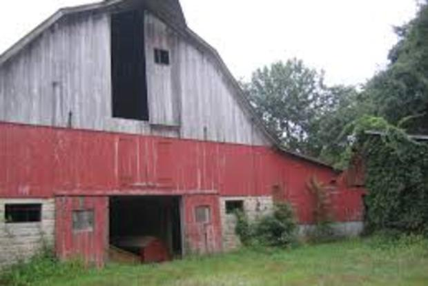 Duvall Tobacco Barns
