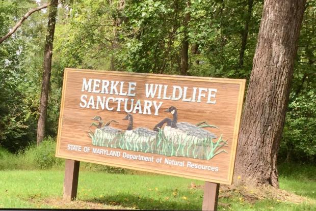 Merkle State Wildlife Sanctuary & Visitor's Center