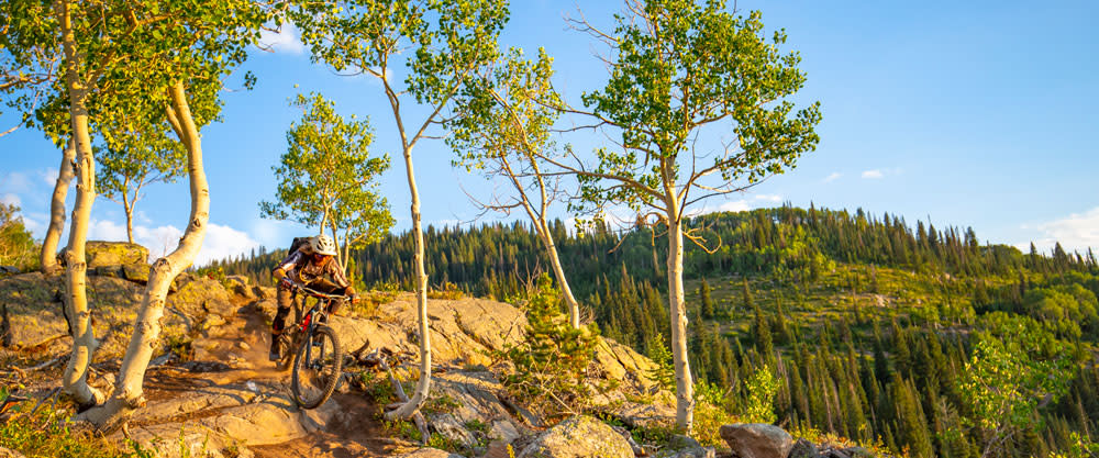 Mountain Biking on Buffalo Pass outside of Steamboat Springs, Colorado