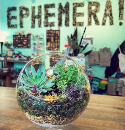ephemera terrariums
