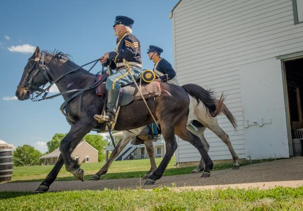 Fort Scott Military Re-enactment Horses & Soldiers - Kansas