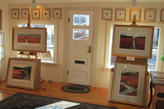 Struna-Gallery