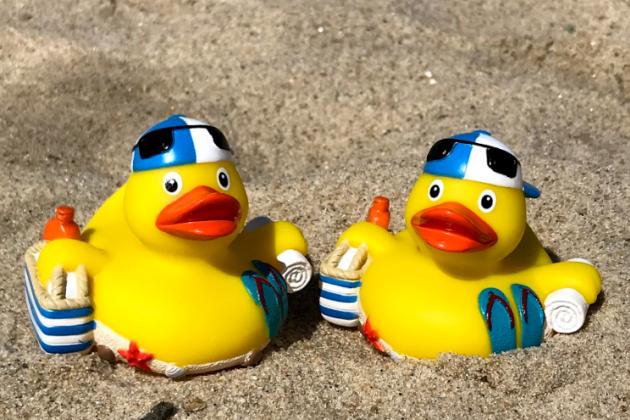 Ducks-2ducks
