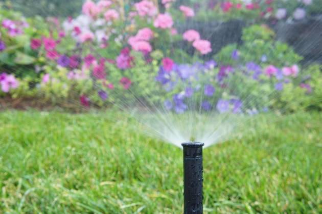 Cape Cod's Sprinkler System Caretaker