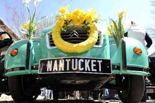 Nantucket Daffodil Festival