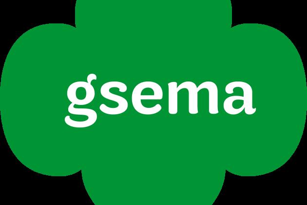 GS_Eastern_Massachusetts_acronym_CMYK.png