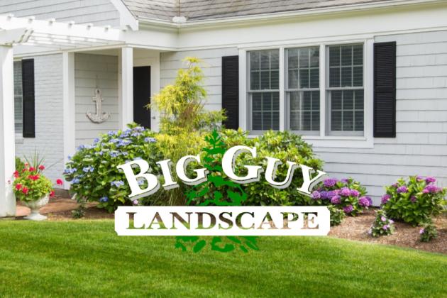 big Guy Landscape