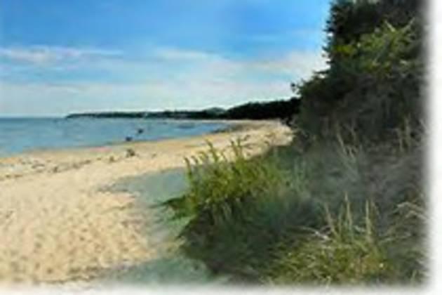 town_beach.jpg