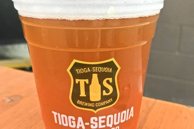 Tioga Sequoia Brewing