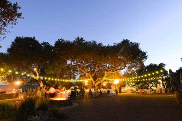 Outdoor wedding at Kunde Winery with lights