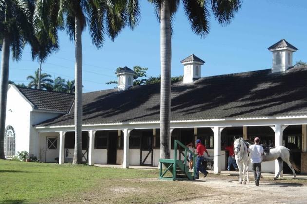 Half Moon Equestrian Centre