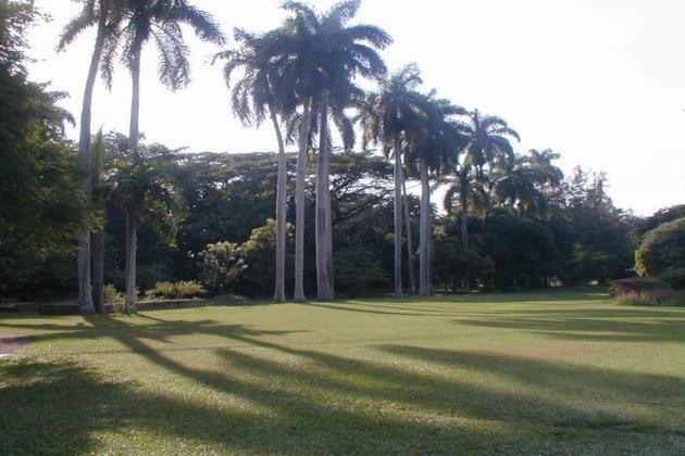 Hope Botanical Gardens