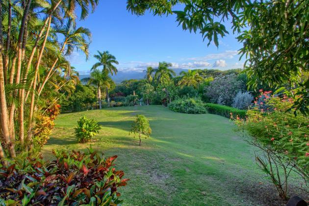 Taino Hills Green Castle Estate