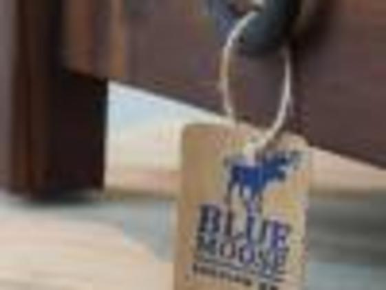 blue Moose tag