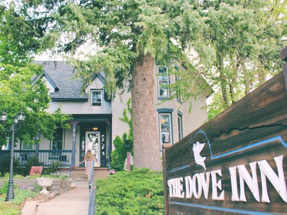 The Dove Inn