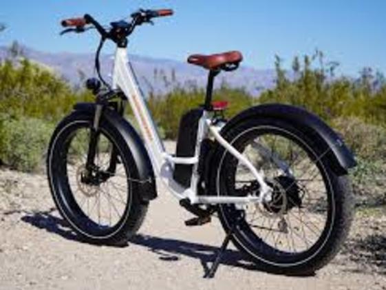 RadRover Fat Tire Electric Bike