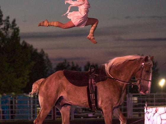 Arena Show - Equine Show