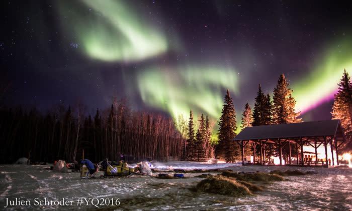 Yukon Quest Start - Fairbanks, Alaska