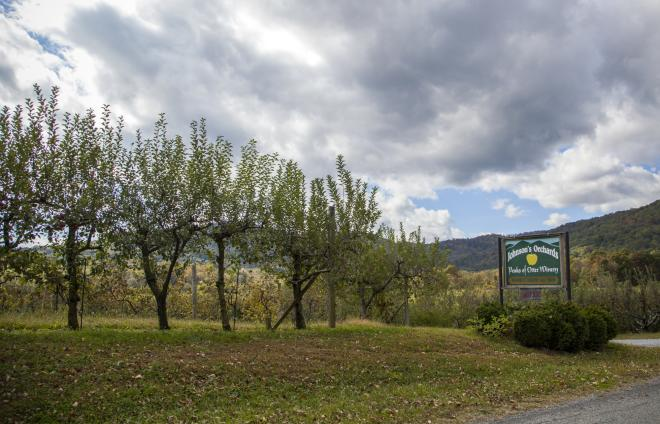 Johnson's Orchards & Peaks of Otter Winery, Bedford