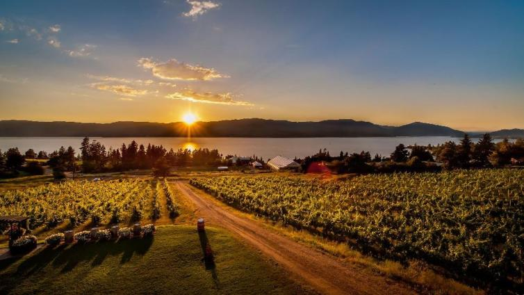 Summerhill Winery