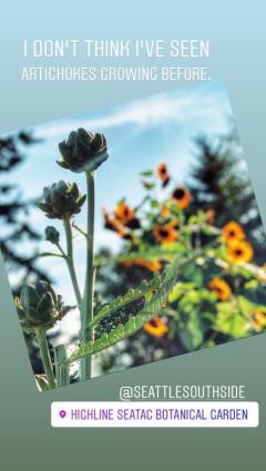 Instagram Story Screenshot at Highline SeaTac Botanical Garden
