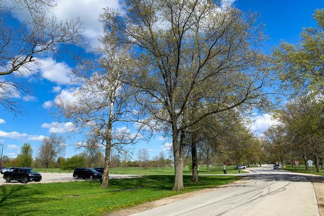 Shoaff Park Southwest Drive and Trail - Parking