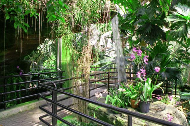 Botanical-Garden.jpg