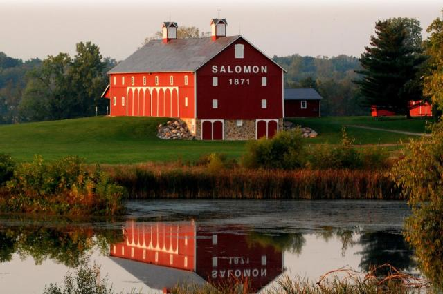 Salomon Farms