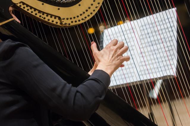 Philharmonic - Strings