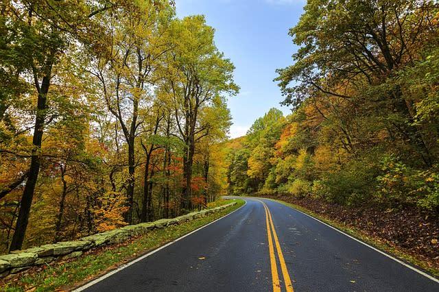 Fall Drive