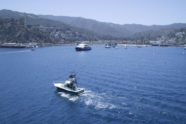 Catalina Custom Charters 2