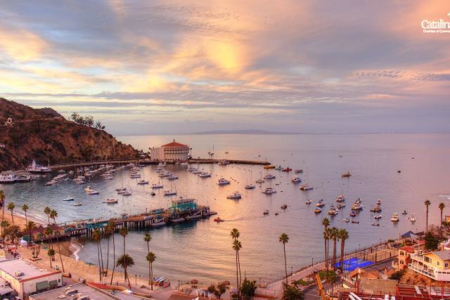 catalina-island-chamber-of-commerce-visitors-bureau-01472689220nJ1.gif
