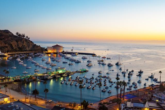 Love Catalina Island