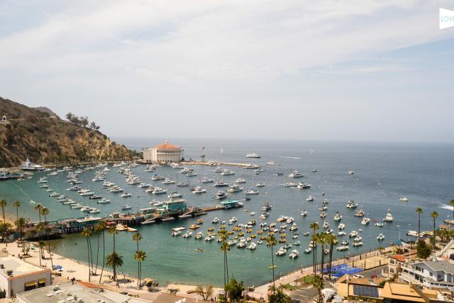 Catalina Island Webcam